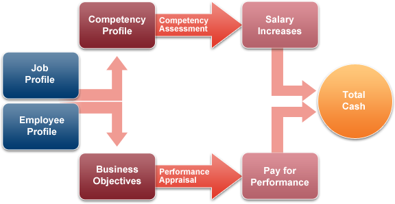 competency profiling Competency profiling competencies are individual collections of behaviors that are observable, measurable, and critical to successful performance a competency model (cm) is a group of related competencies that come together to describe successful performance.